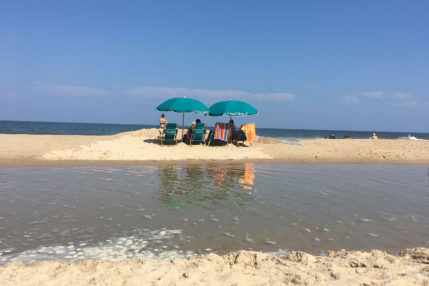Equipment such as beach umbrellas and chairs area available for rent.
